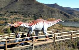 Visita guiada a un yacimiento de huellas de dinosaurios en Igea