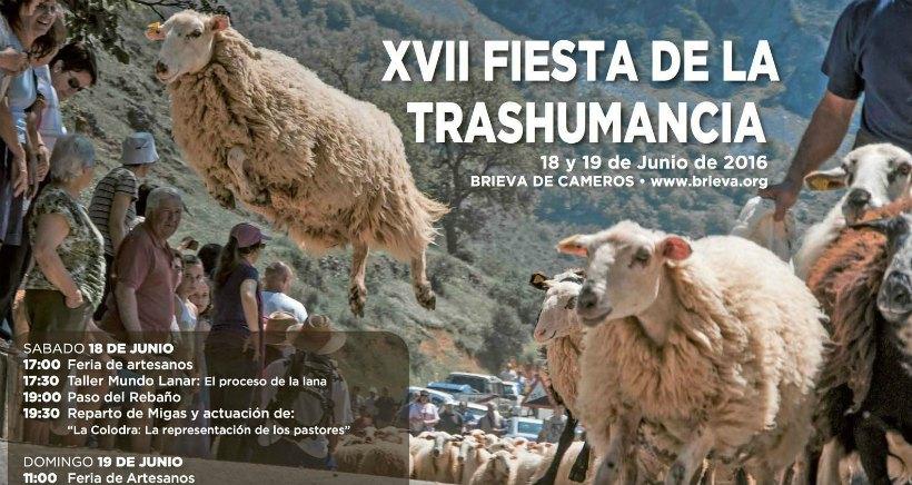 Este fin de semana, vive la XVII Fiesta de la Trashumancia en Brieva de Cameros