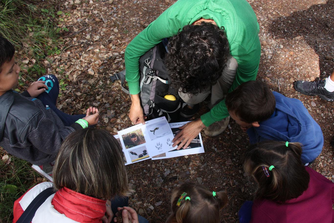 Curso gratuito de Educación Ambiental para educadores en Finca Ribavellosa