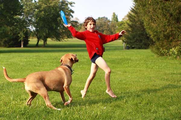 nino-jugando-con-perro