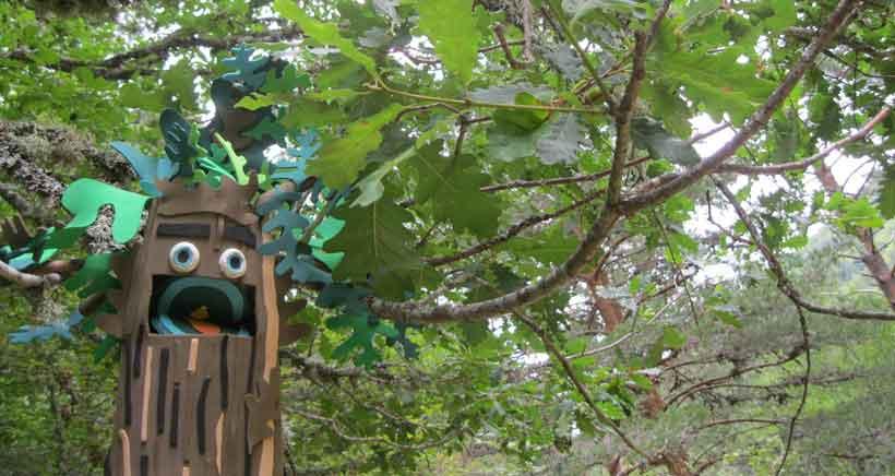 Parque-Natural-Sierra-Cebollera.-El-bosque-magico-que-cuenta-historias