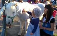 Paseos a caballo y talleres en el Pony Day de Decathlon Logroño