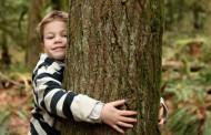 Talleres sobre los árboles en el Aula Didáctica La Grajera