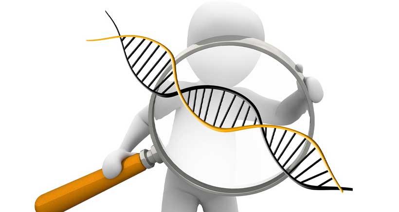 Llévate tu ADN en una cápsula, en este taller científico en La Merced