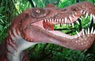 Conoce el yacimiento de huellas de dinosaurio más importante de Europa