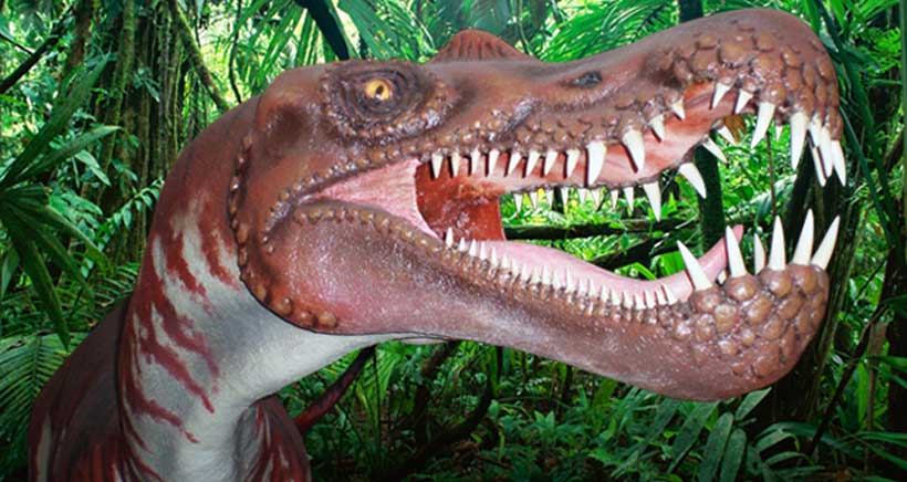 Centro-de-interpretacion-paleontologica-Igea-La-Rioja