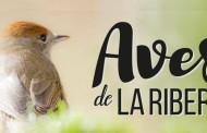 Exposición de aves de la ribera, en la Casa de las Ciencias