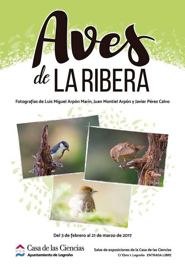 Exposicion-aves-de-la-Ribera-Casa-de-las-Ciencias
