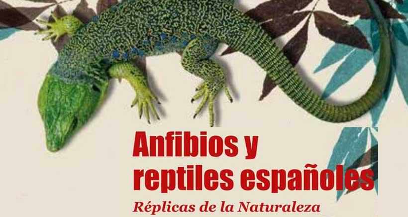 Exposicion-replicas-Anfibios-y-reptiles-Casa-de-las-Ciencias-Logrono