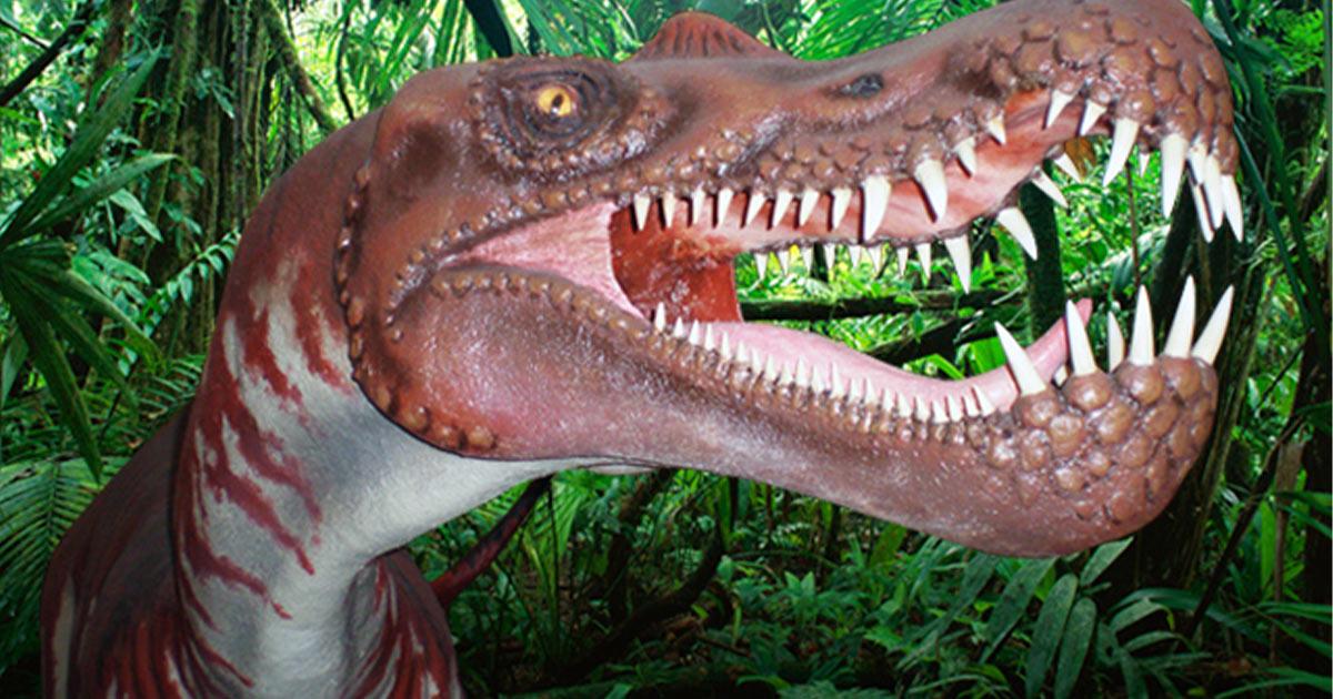 centro-paleontologico-de-la-rioja-igea