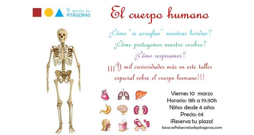 Taller-el-cuerpo-humano