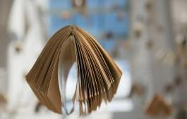 Celebra el Día del Libro en la Biblioteca Rafael Azcona