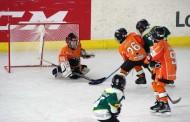 Aprende hockey hielo en la escuela del Milenio Club Patín