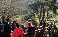 Rutas con niños por Sierra Cebollera: un paseo entre cuentos