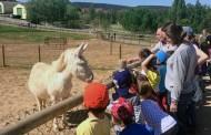 Despide a los 100 animales de la granja de La Grajera