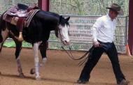 Los 'vaqueros' del s.XXI se dan cita en Anguiano
