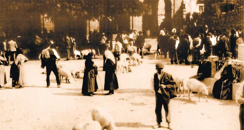 Feria ganadera de Soto en Cameros