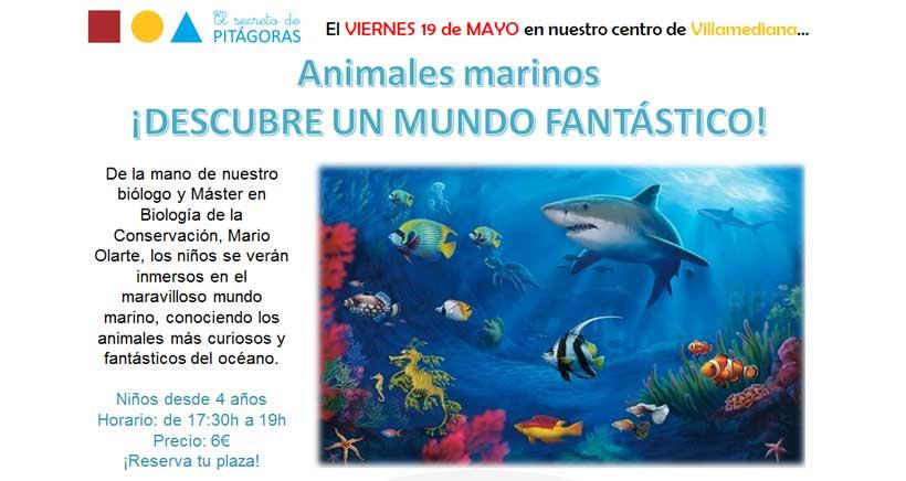 taller-biologia-marina-Villamediana