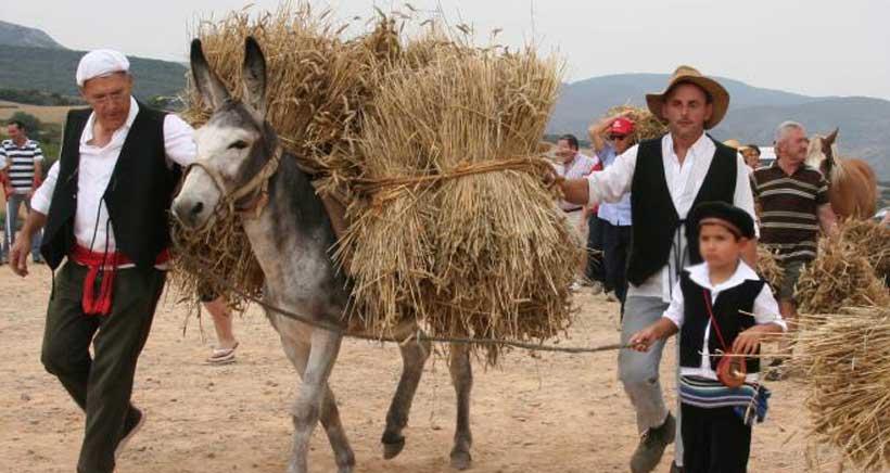 Fiesta-de-la-Molienda-Ocon