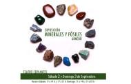 Exposición de minerales en el Teatro Cervantes de Arnedo