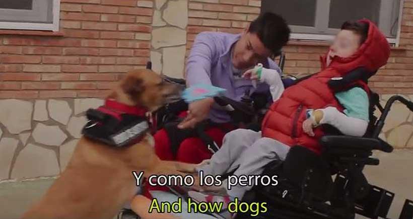 Un documental riojano muestra el trabajo de perros de asistencia con niños con discapacidad