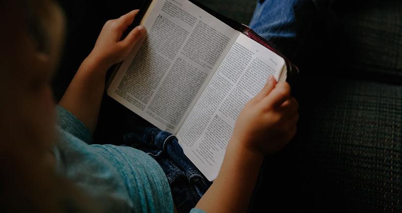 'Manzanas tempranas', el nuevo club de lectura para 9 a 12 años