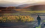 112 opciones para disfrutar a tope de La Rioja en otoño