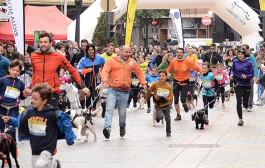 Participa con tu perro en la Canicross Campus UR