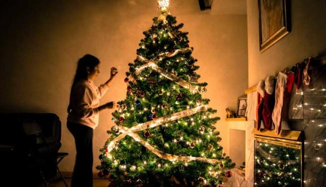 concurso-arboles-navidad