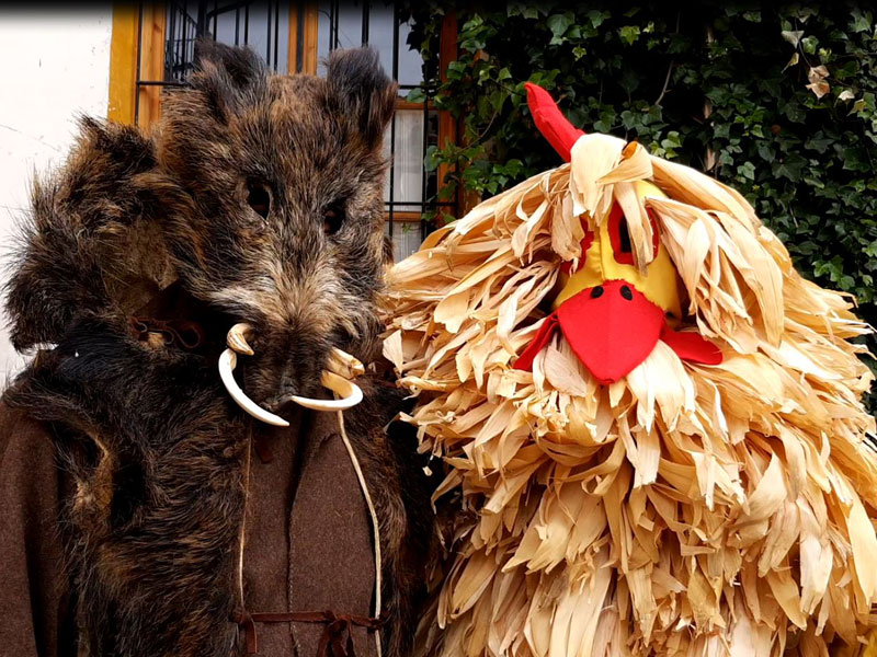 Carnaval Tradicional de Enciso