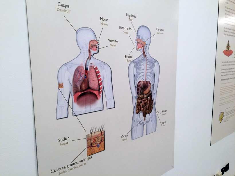 Excreta-Casa-ciencias