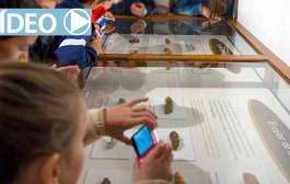 'Excreta', una exposición sobre cacas, en la Casa de las Ciencias