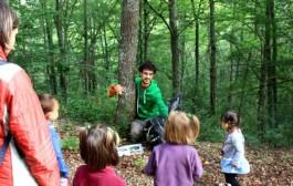 Excursión guiada a los bosques de Ribavellosa