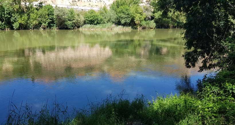 ribera-Ebro-Logrono