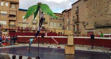 Festival-circo-navarra-2017