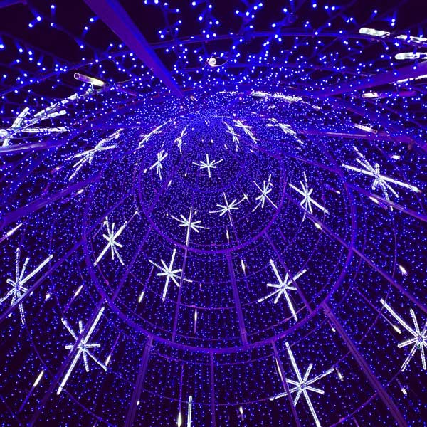 interior-arbol-navidad-espolon