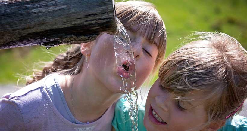 Taller de degustación de aguas