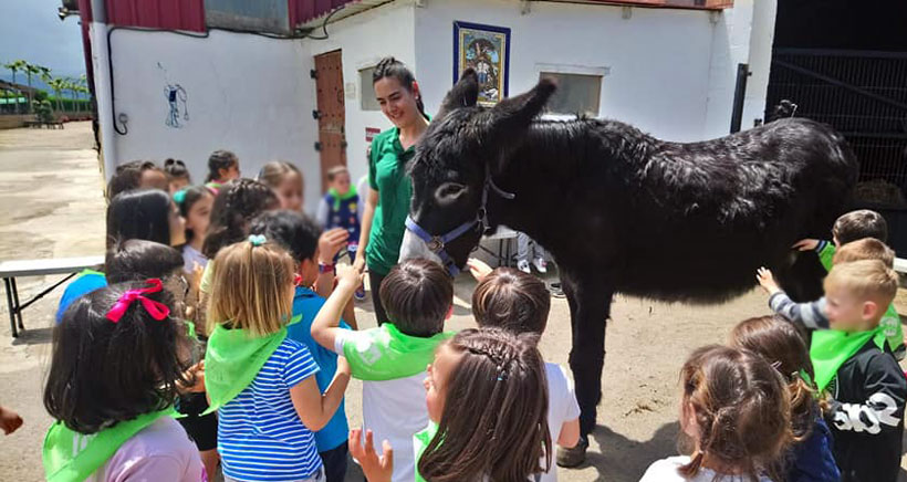 Granja-escuela-encinar-burro