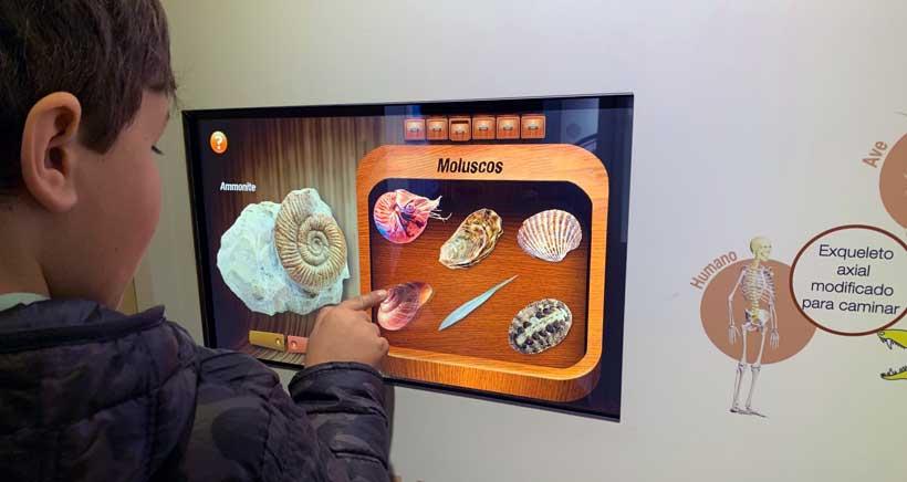 Centro-Paleontologico-Enciso