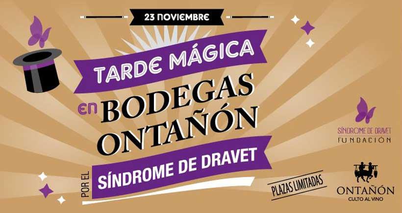 Una tarde mágica en Bodegas Ontañón