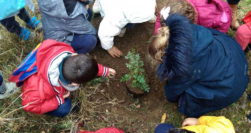 ninos-plantando-arboles