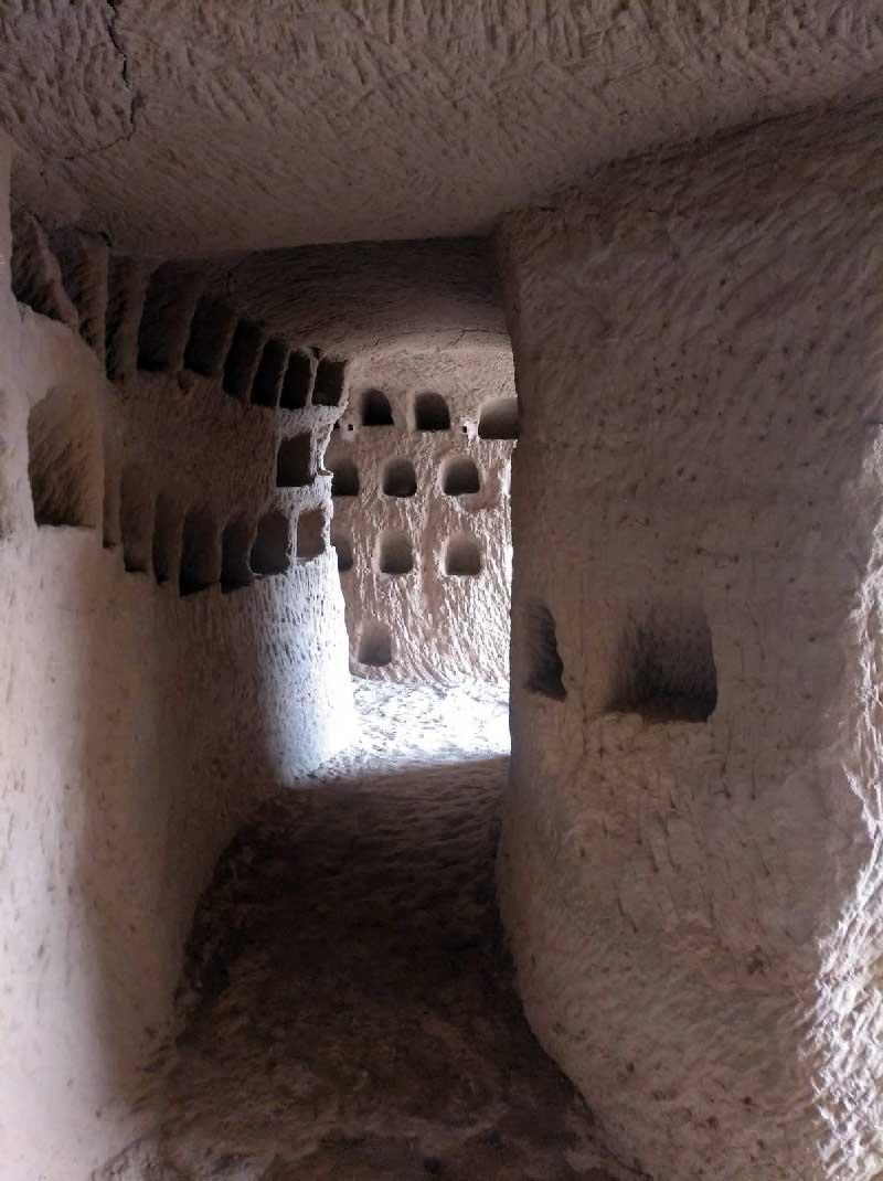 Cueva-palomares