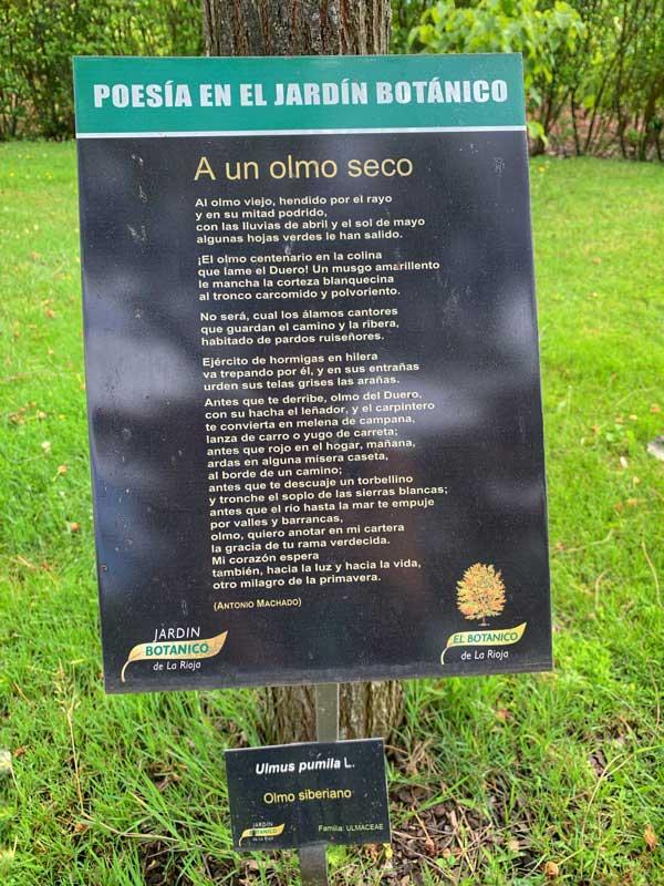 Poesia-en-el-jardin-botanico