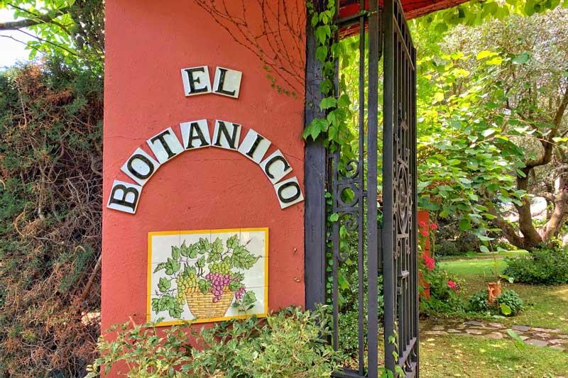 Taller infantil de naturaleza y escultura en el Jardín Botánico