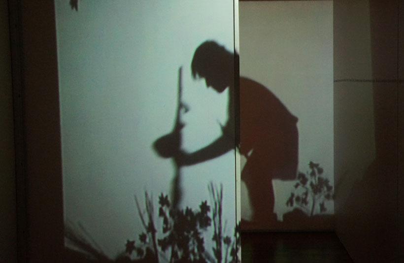 laberinto-de-las-sombras-en-centro-de-interpretacion