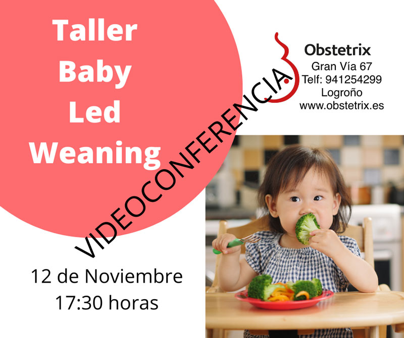Taller-Baby-Led-Weaning-VC