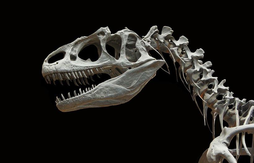 Fósiles que brillan en la oscuridad y pegatinas para Halloween, talleres en Art&Ñam