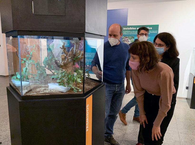 Asombrosas criaturas transparentes en la Casa de las Ciencias