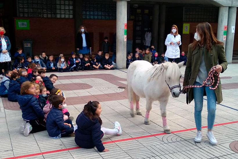 agustinas-patio-caballo