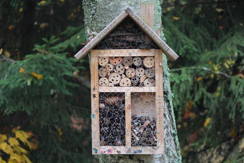 El Aula Didáctica te enseña a construir un hotel para insectos
